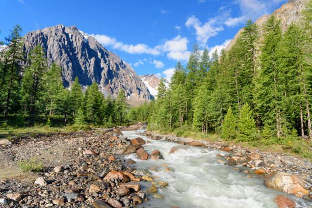 view on aktru river, karatash peak and aktru glacier. altai republic. russia - państwowy rezerwat przyrody altay zdjęcia i obrazy z banku zdjęć