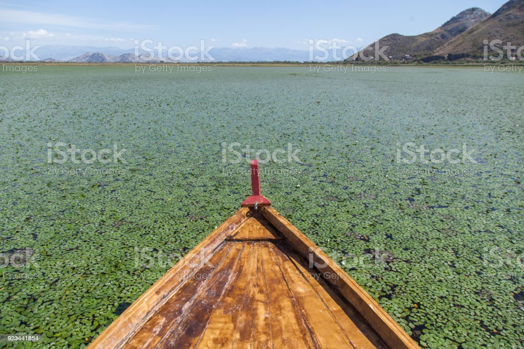 View on boat in the middle of Skadar Lake. stock photo