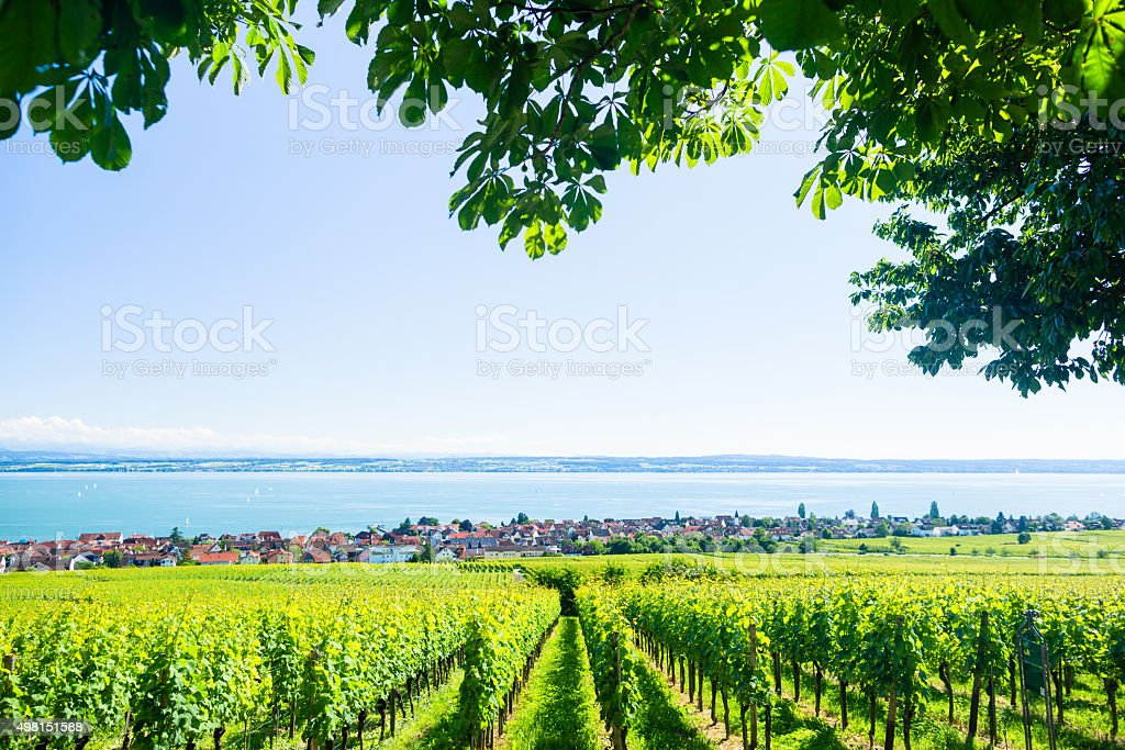 View on Bodensee with alp mountain range in background stock photo