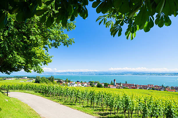 View on Bodensee with alp mountain range in background View on Bodensee with alp mountain range in background Bodensee stock pictures, royalty-free photos & images