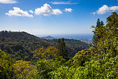 view over honolulu and diamond head crater seen from tantalus drive.