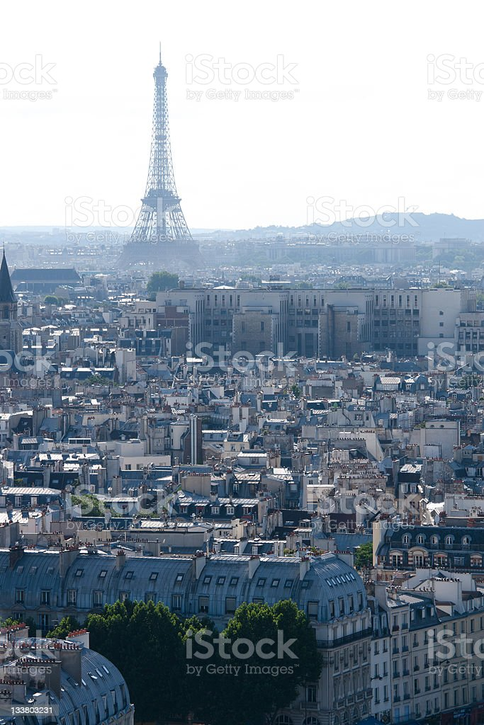 View on  Eiffel Tower from Notre Dame royalty-free stock photo
