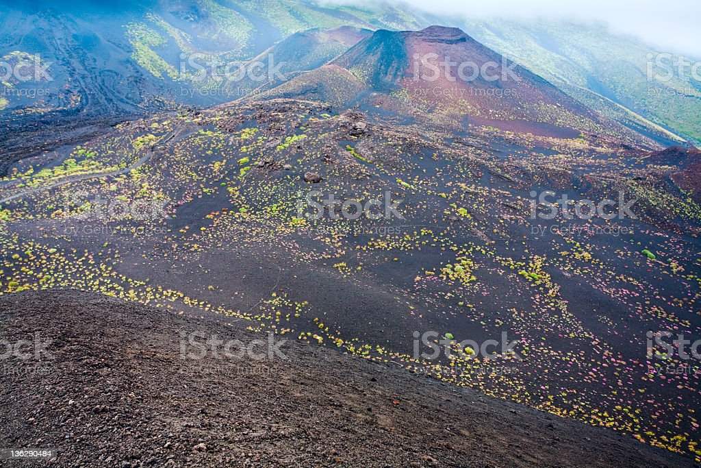 view on Etna craters, Sicily stock photo