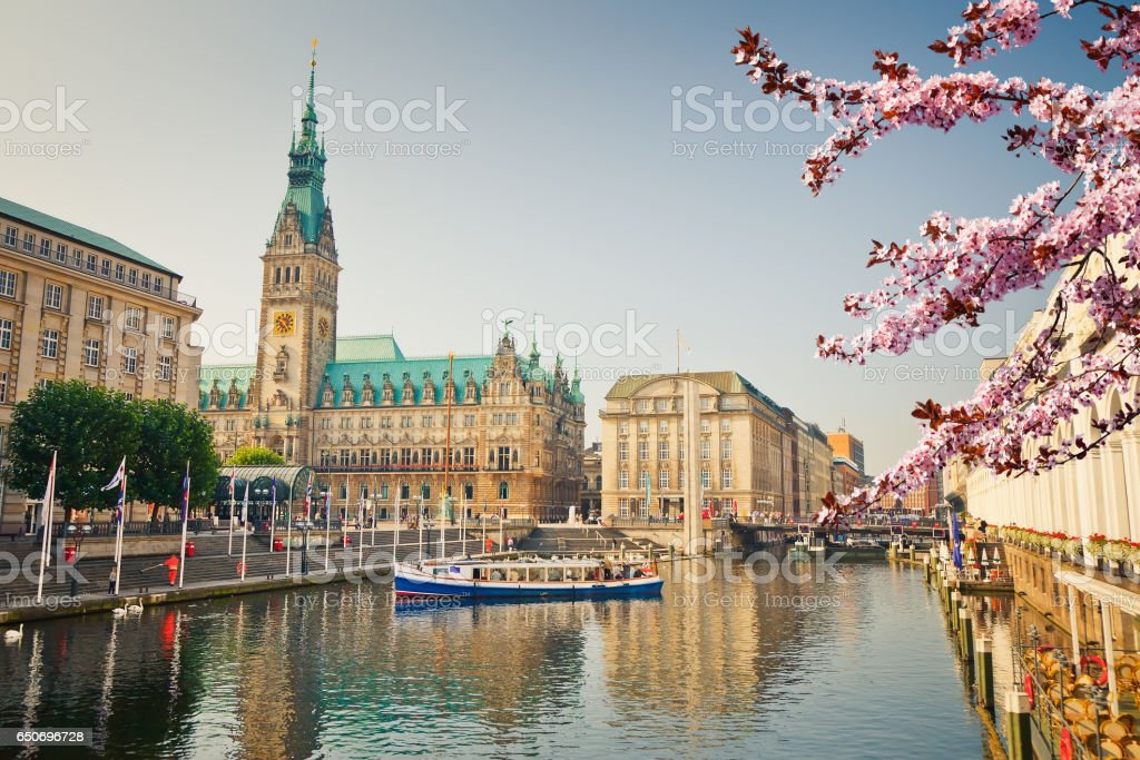 View on Hamburg townhall at spring