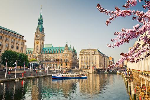 View on Hamburg townhall at spring