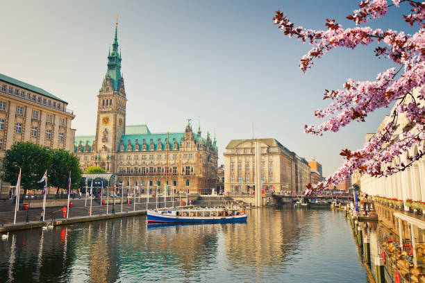 View on Hamburg townhall at spring stock photo