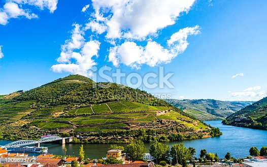 Landscape Of Douro Vineyards, Pinhao, Portugal
