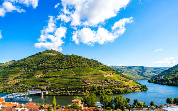 view on landscape of douro vineyards, pinhao, portugal - douro imagens e fotografias de stock