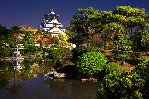 view on Osaka Castle from the garden at night, Japan