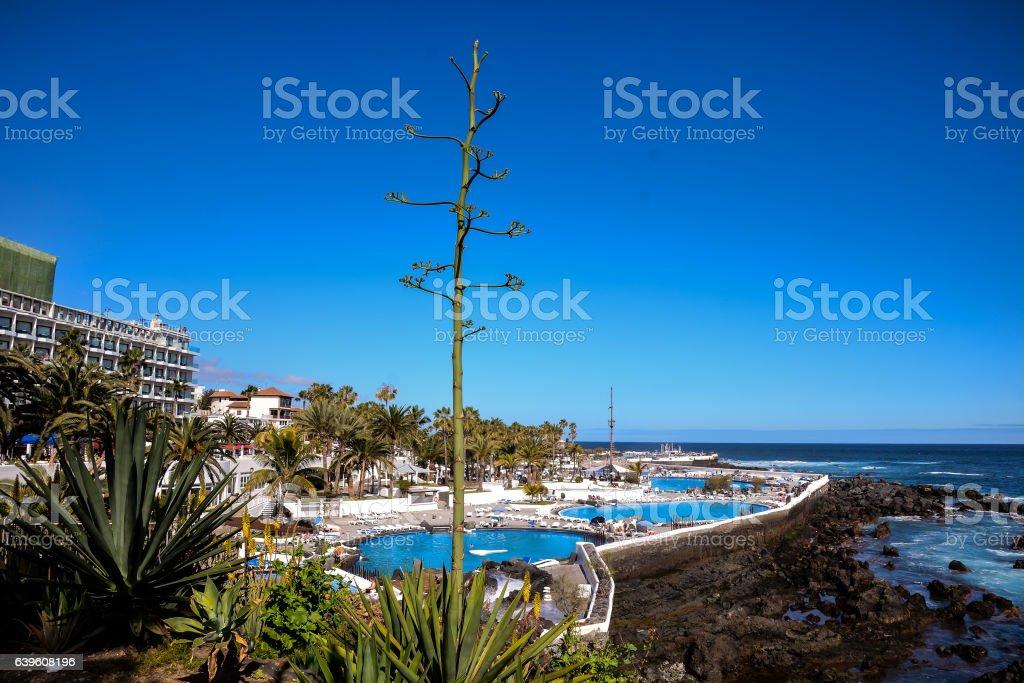 View on Puerto de la Cruz stock photo
