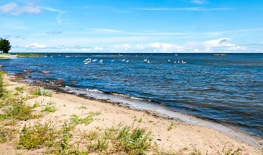 View on the Baltic sea, Kaltene, Latvia