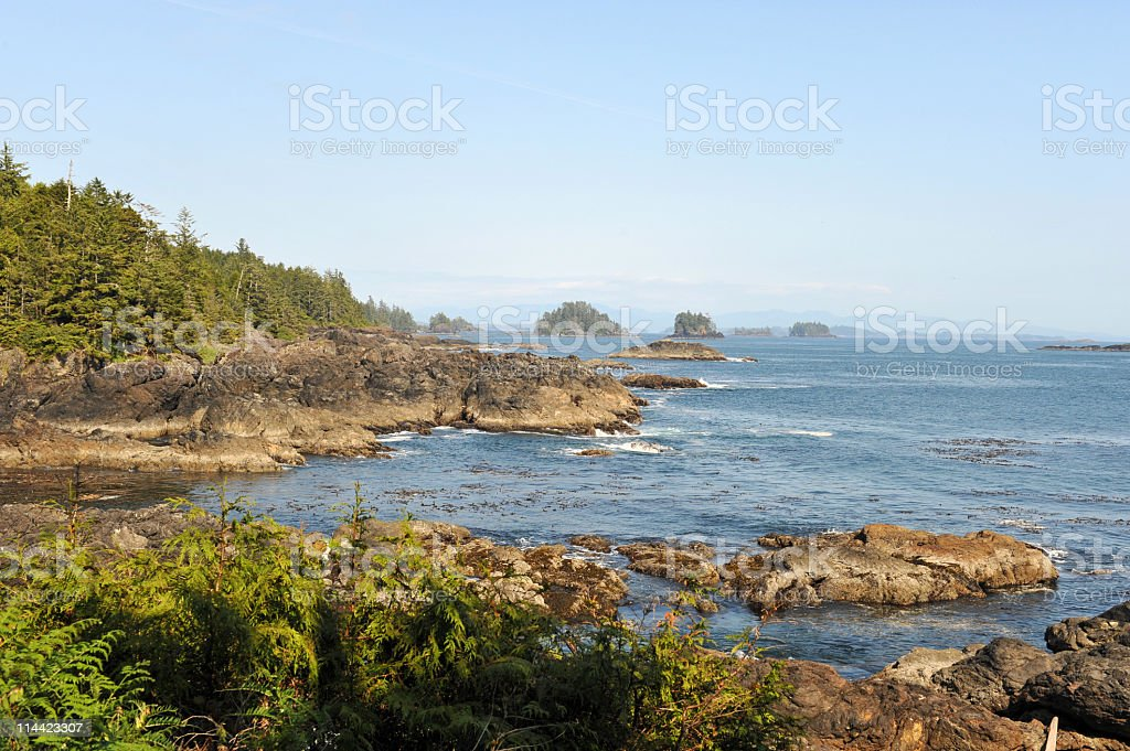 View on the Barkley Sound, Ucluelet,Vancouver Island,Canada stock photo