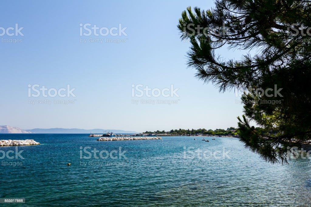 View on the bay trough pine tree, artificial reef stock photo