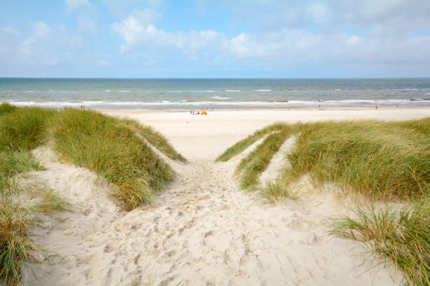 Blick auf die wunderschöne Landschaft mit Strand und Dünen an der Nordsee, Jütland Dänemark – Foto