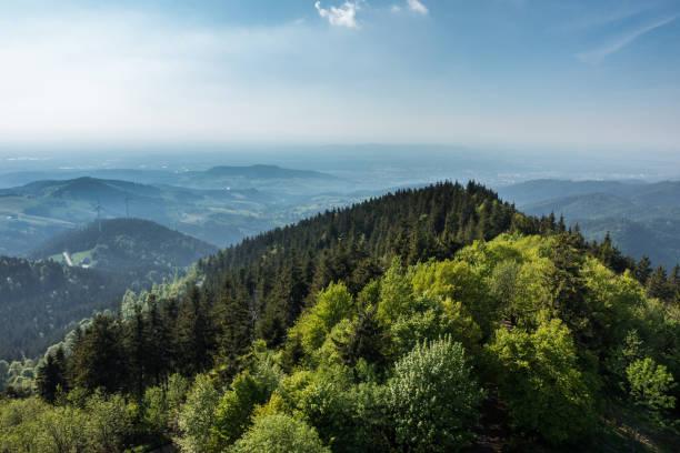 blick auf den schwarzwald - sommerferien baden württemberg stock-fotos und bilder