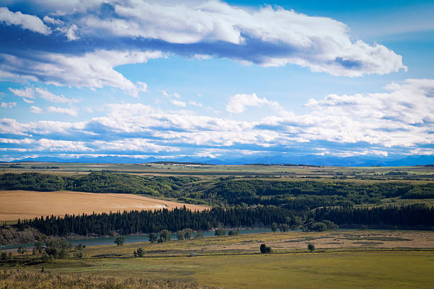 view on the bow river from glenbow ranch provincial park - provincial park stock photos and pictures