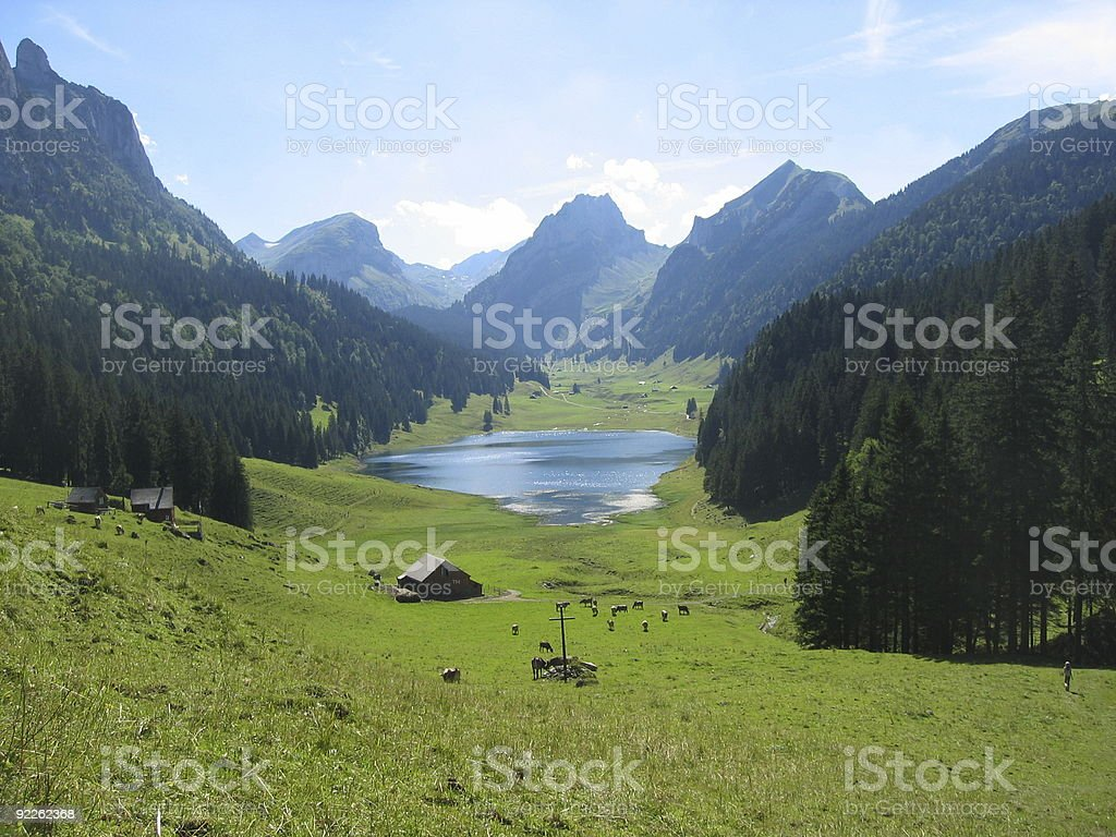 view on the lake royalty-free stock photo