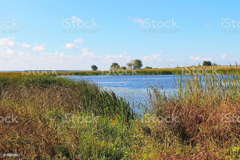 View on the river Dnieper stock photo