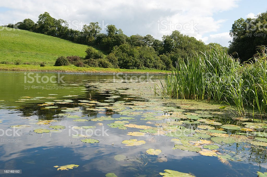 View on the River Erne stock photo