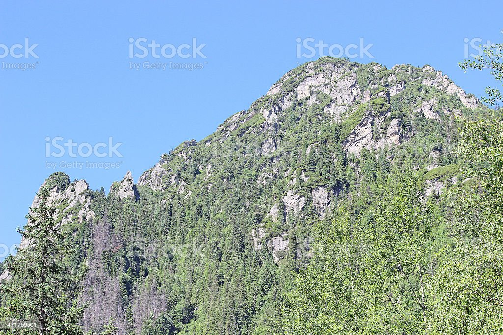 View on the Tatra Mountains in summer royalty-free stock photo