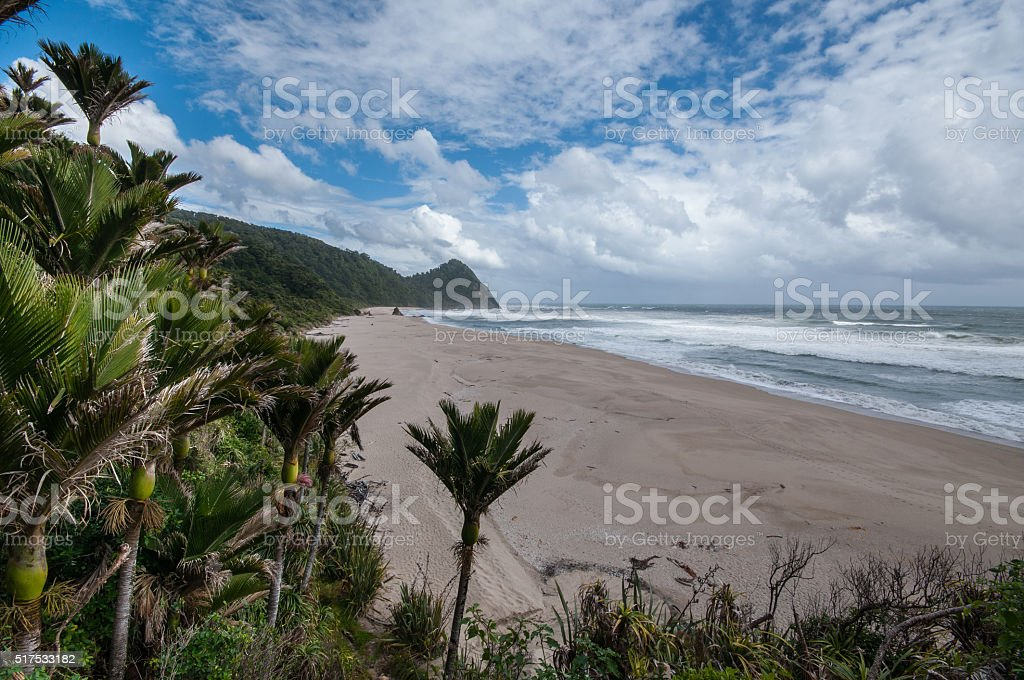 View on West Coast from Heaphy Track stock photo