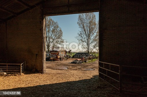 Looking out of a barn in Amsterdam, Netherlands