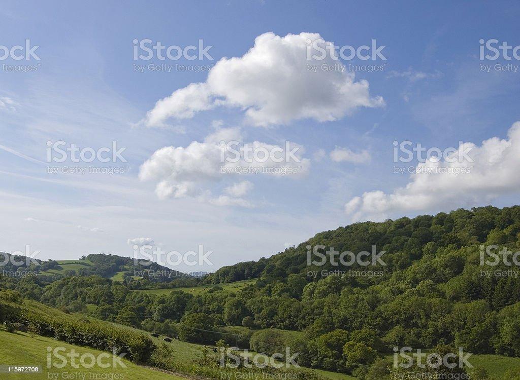 View over Dartmoor. royalty-free stock photo