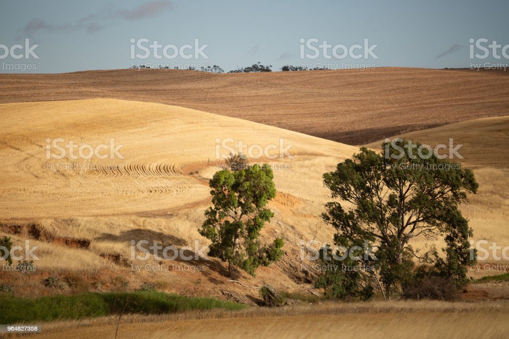View over dry farm paddocks royalty-free stock photo