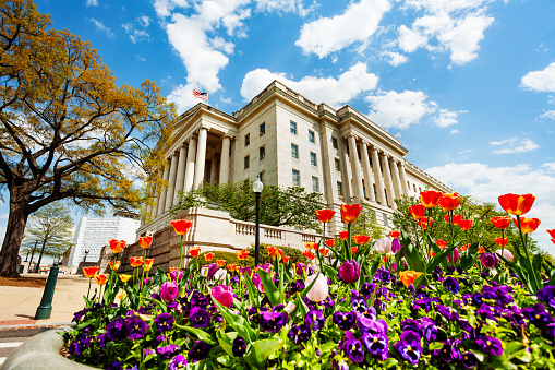 Library of Congress de facto national one of the United States in Washington through flowers