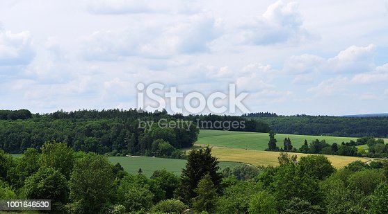 landscape with fields and meadows, forest and cloudy sky