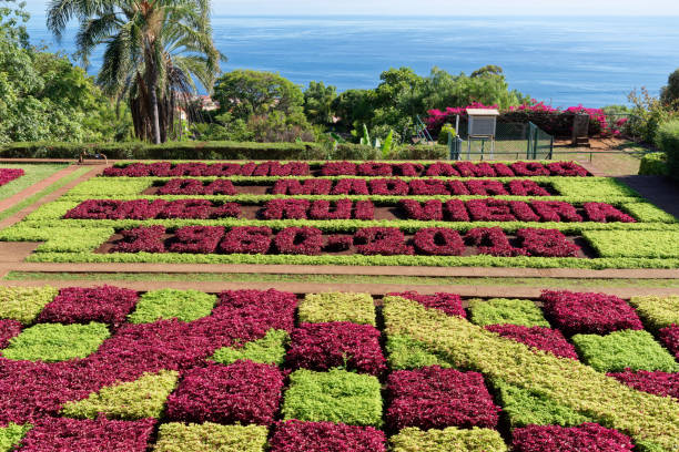 View over Jardim Botanico garden on Madeira island stock photo