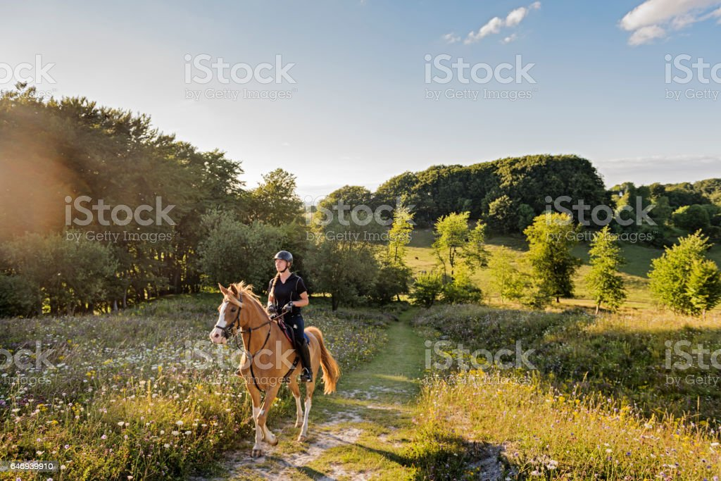 View Over Jydelejet With  Horse and Rider on Møn Denmark. stock photo
