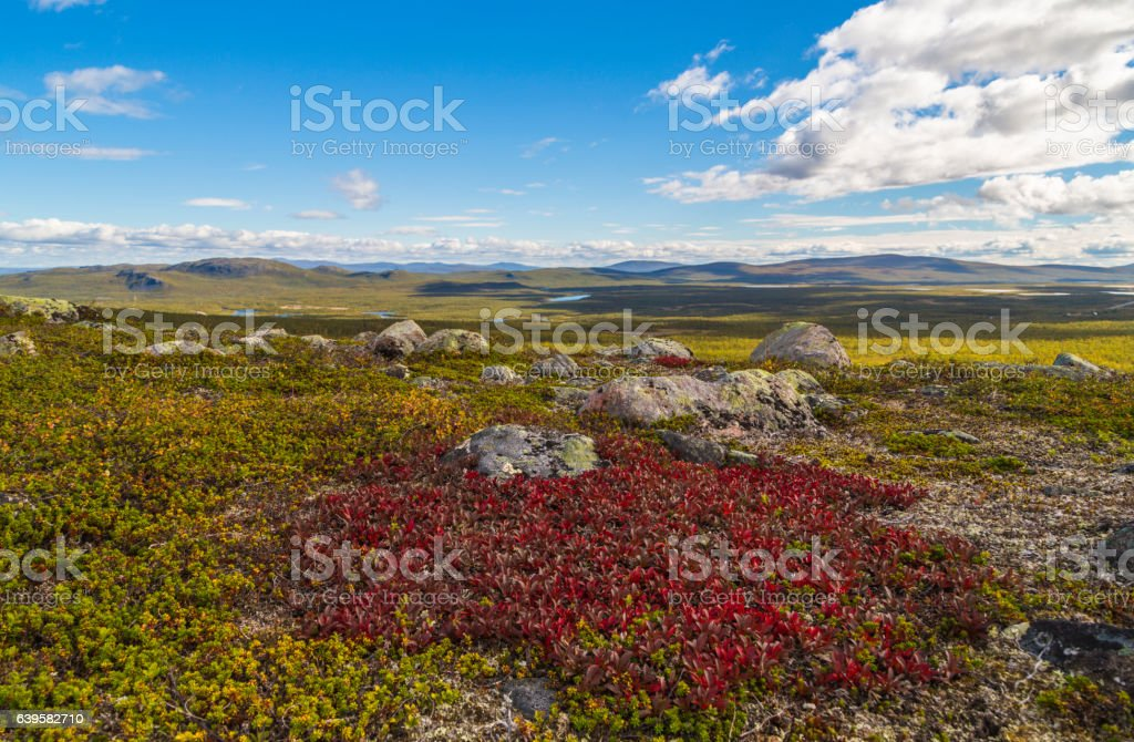 View over mountain area, Swedish Lapland stock photo