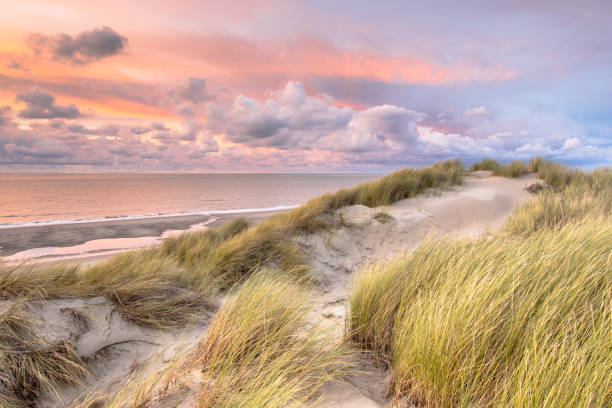View over North Sea from dune stock photo