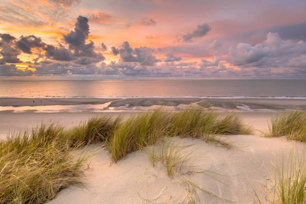 모래 언덕에서 북해 전망 - 사구 지형 뉴스 사진 이미지