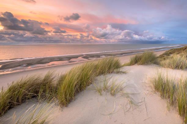visa över nordsjön från dune - sanddyn bildbanksfoton och bilder