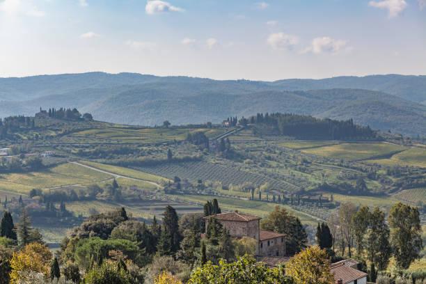 Blick über das alte Steinhaus zu Hügeln mit Weinbergen in der Nähe von Chastellina in Chianti in der Toskana – Foto