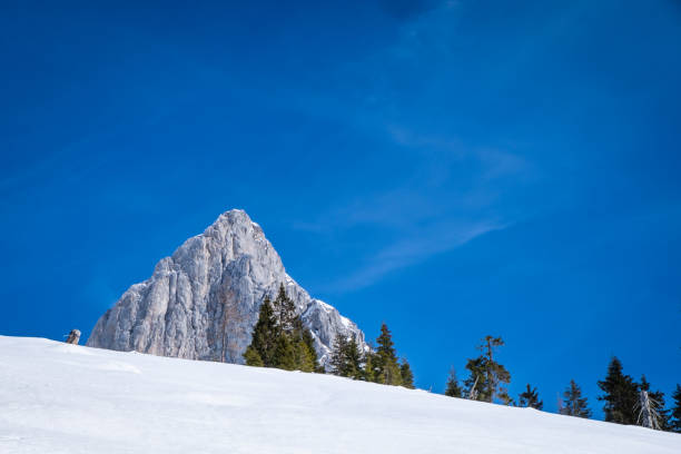 View over snowy hill in Kaiserau with mountain Admonter Kalbling – Foto