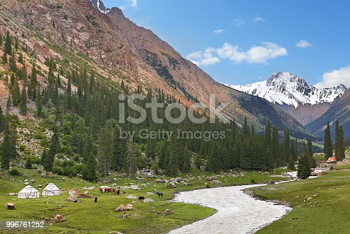 istock View over the Barskaun Gorge with nomadic tents and horses, Kyrgyzstan. 996761252