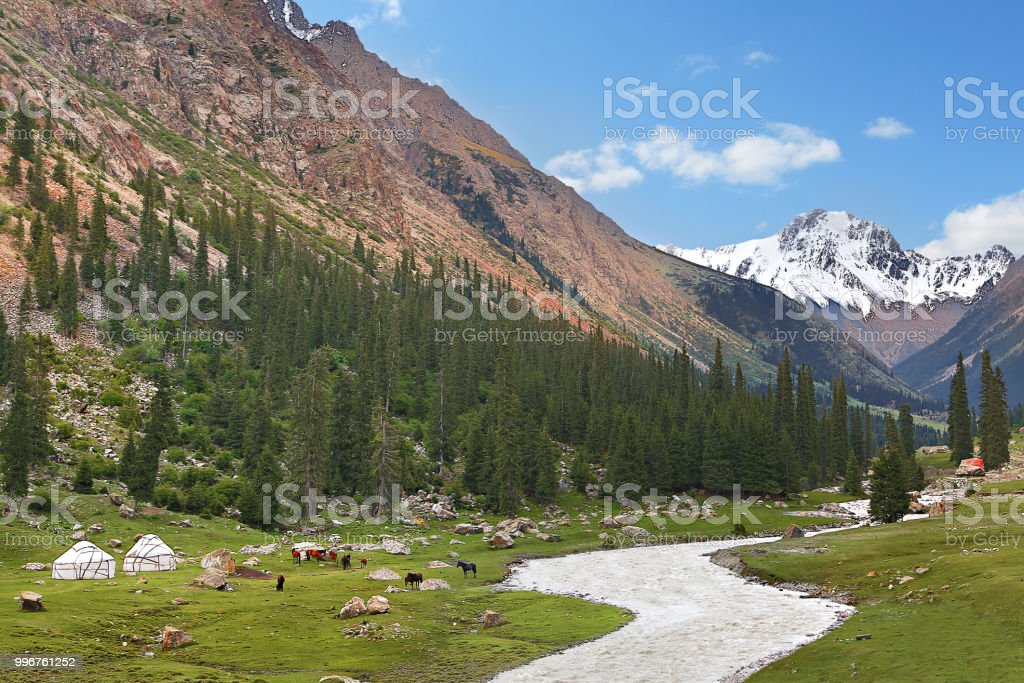 View over the Barskaun Gorge with nomadic tents and horses, Kyrgyzstan. stock photo
