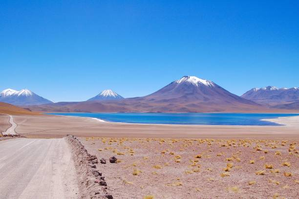 View over the beautiful Lagoon Miscanti in Chile stock photo