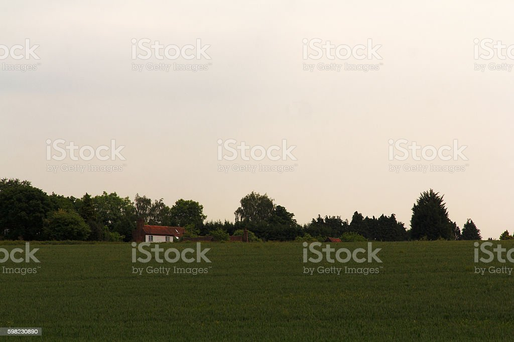 View over the English countryside in the Chilterns foto royalty-free