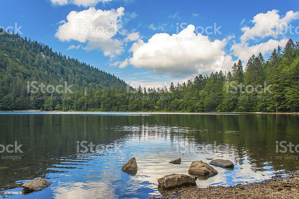 View over the Feldsee in Germany Feldberg stock photo