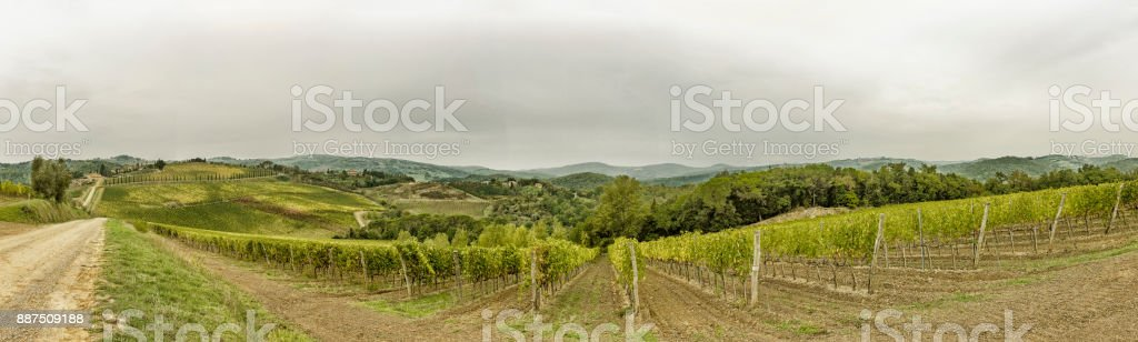 View over the hills with vineyards in beatiful Tuscany in Italy stock photo