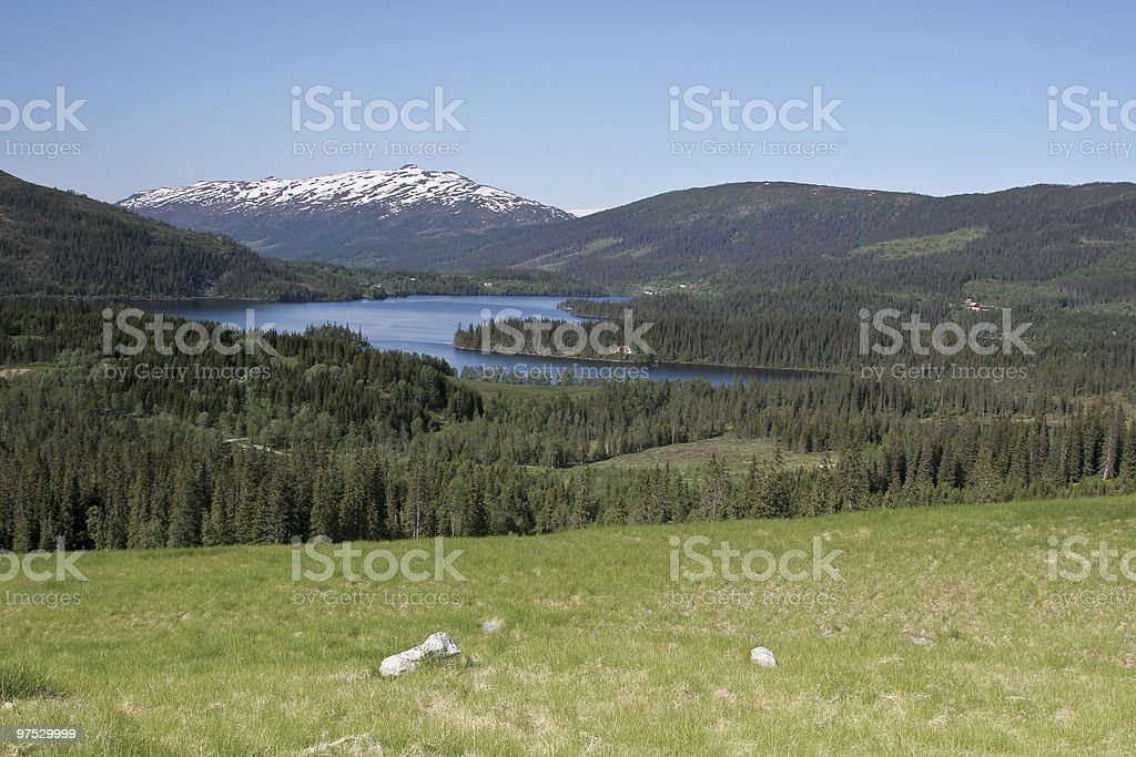 view over the lake royalty-free stock photo