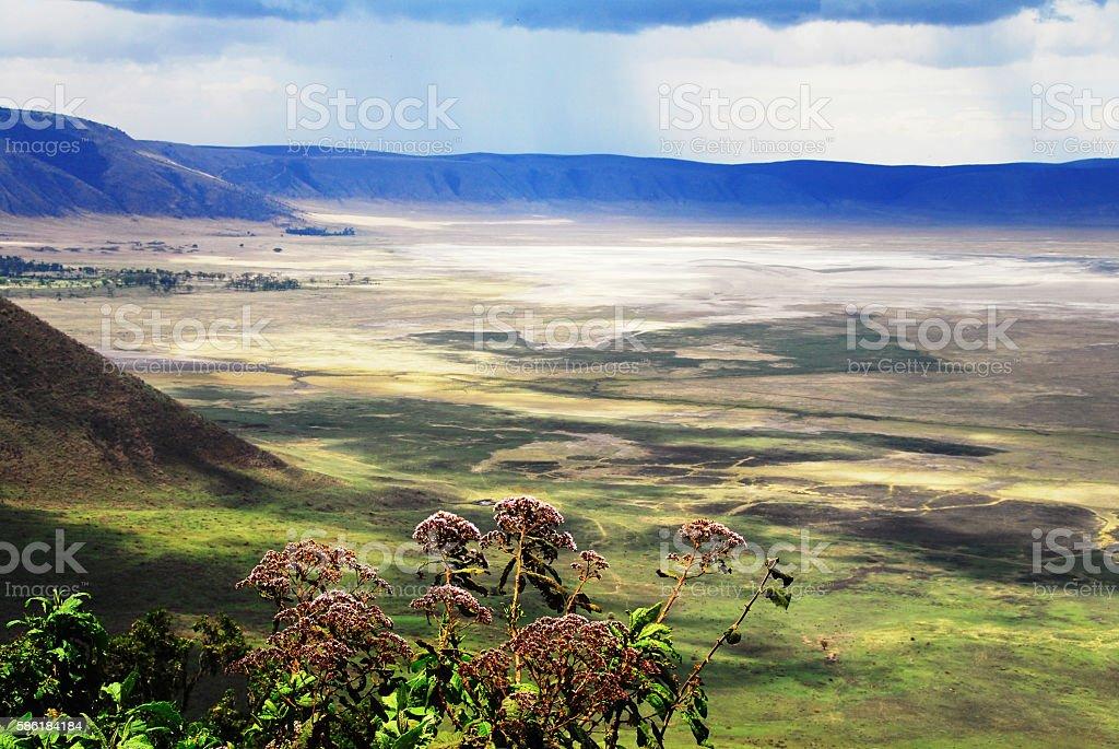 View over the Ngorongoro crater,Tanzania stock photo