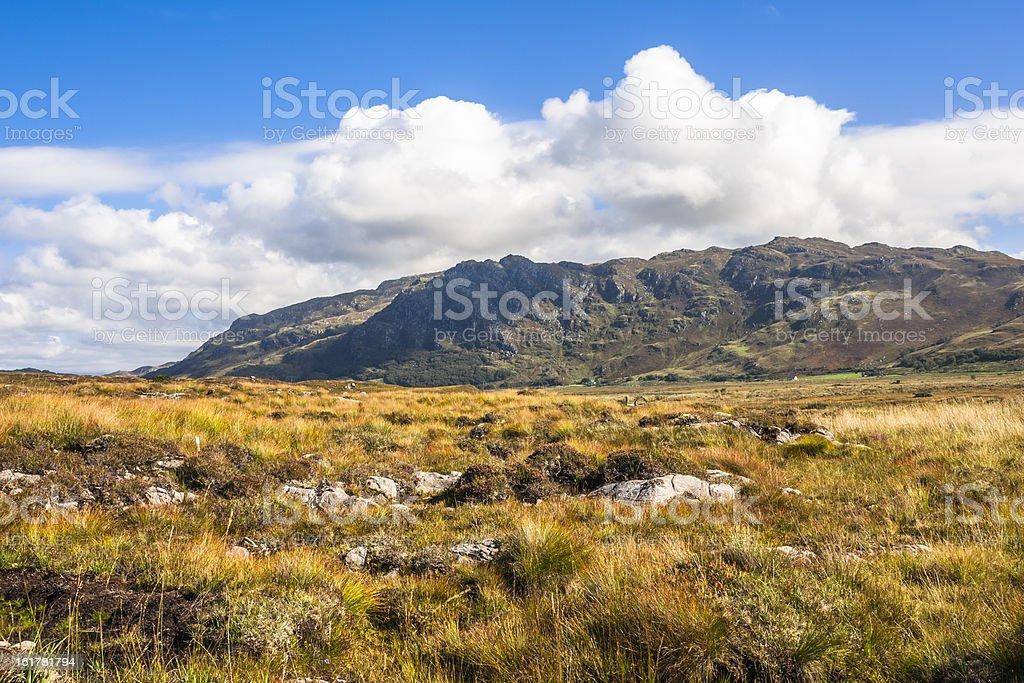 View over the Peat bog to Sgurr an t Sasunnnaich stock photo