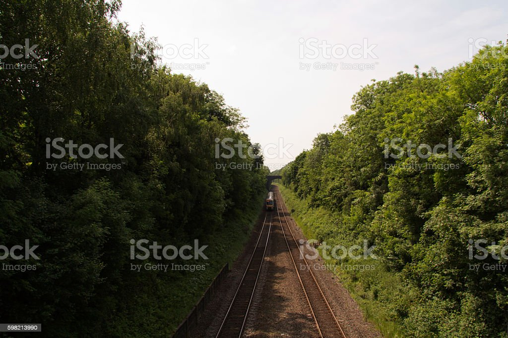 View over the railway line with trees on each side foto royalty-free