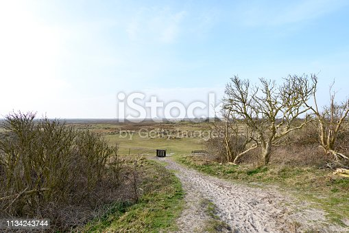 View over the salt marsh at Schiermonnikoog Wadden island in Friesland, The Netherlands during a beautiful winter day.