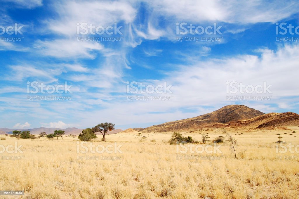 View over the savannah in Namibia stock photo
